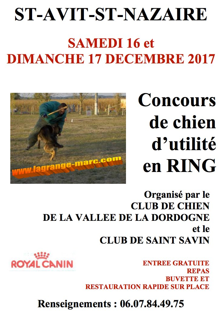 2017-1216-17-concours-chien.jpg